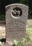 Ray Davis tombstone