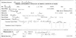 Michelson, Anna - death certificate