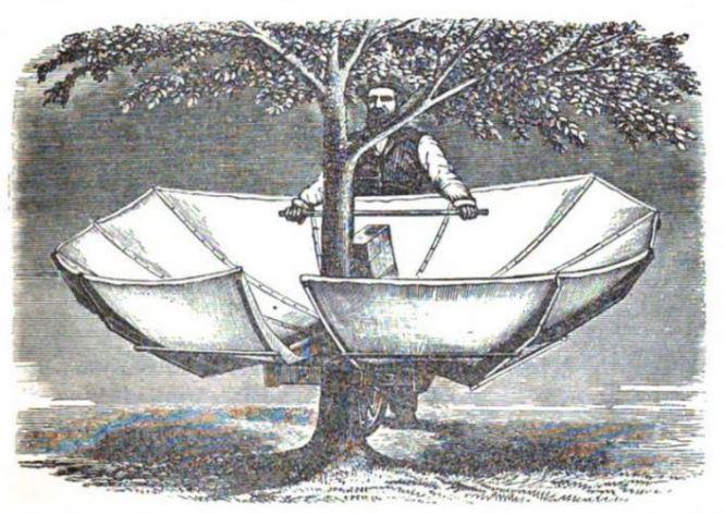 curculio catcher